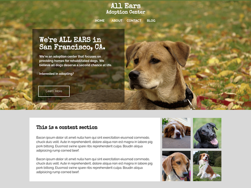 All Ears website template