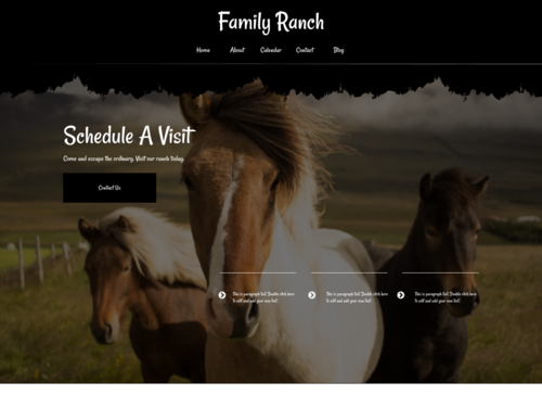 Horses website template