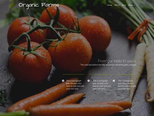 Organic Vegetables website template