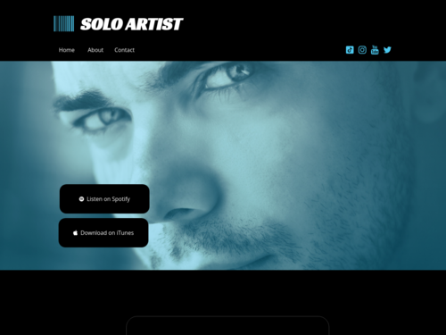 Solo Artist website template